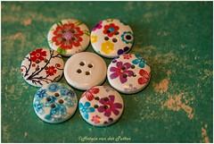 Flowers (HP035651) (Hetwie) Tags: strik knoppen macromonday flowers bloem bows buttons maandag macro helmond noordbrabant nederland nl