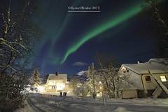 Northern_Lights_05_12_2017_I (LyonelPerabo) Tags: norge north norway northern northnorway nordic northernlight northernlights nord norwegian nordnorge december winter 2017 christmas snow ice aurora auroraborealis green blue sky light lights tree trees wood wooden woods house houses city town citylights citycenter urban arctic polar borealis landscape skies night nighttime evening street