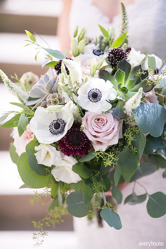 """Anemone Bouquet • <a style=""""font-size:0.8em;"""" href=""""http://www.flickr.com/photos/81396050@N06/25003208378/"""" target=""""_blank"""">View on Flickr</a>"""