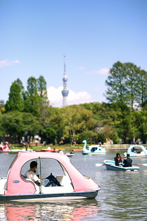 Pedalo at Ueno Park