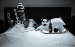 Tiffany at breakfast (Tazmanic) Tags: bed dog girl magazine champagne juice pillows monochrome