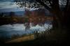 Today's Ending (☺dannicamra☺) Tags: nikon germany bavaria bayern regenstauf landscape water river sky clouds boat tree evening autumn fall nature fluss landschaft abends wasser baum himmel berg hill natur herbst november glow d5100 350mm f18 spiegelung boot dark blue reflection