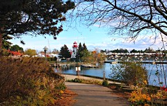 """Be happy for this moment. This moment is your life."" ~ Omar Khayyam (Trinimusic2008 - stay blessed) Tags: trinimusic2008 judymeikle nature today november 2017 fall neighbourhood walk toronto to ontario canada lake lakeontario lighthouse mimico humberbaypromenade sky water autumn"