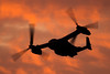 Knife departure (Nick Collins Photography, Thanks for 3 million vie) Tags: cv22b osprey raf mildenhall bell boeing prop blur aircraft aviation flying military sunset suffolk uk usaf usafe canon 7dmk2 500mm 100400mm 352nd sow sillouette