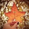 FALL in love with... AUTUMN! ;-) (Maria Godfrida) Tags: smileonsaturday onesingleleaf leaf autumn fall closeup hand bokeh love heart nature plants flora 7dwf