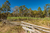 Morningside Farms (hetrickwesley) Tags: canon 80d florida gainesville morningside morningsidenaturecenter sugarcane fence cotton farm landscape