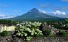 BICOL photos by DocGelo (docgelo) Tags: bicol mayon docgelo travel philippines legazpicity albay mayonvolcano mountmayon travelblogger