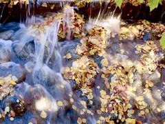 Fall Ends 2017 (Robert Cowlishaw (Mertonian)) Tags: silky mertonian refuse robertcowlishaw canonpowershotg7xmarkii markii g7x powershot canon colors colours creek autumn fall leaves stream