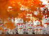 Happy-come-come-cats in autumn (Tomo M) Tags: pottery doll cat autumn temple japan tokyo 豪徳寺 bokeh autumncolors 紅葉 beckoningcat