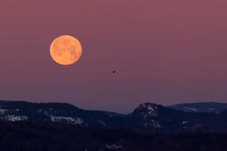 Setting Moon at Dawn