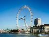 Bird's Eye View (Peeblespair) Tags: london travel britain blackbackedgull londoneye westminsterbridge birdinflight perfecttiming peeblespairphotography peeblespair