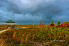 Marsh Storm Approaching (tclaud2002) Tags: storm stormy weather marsh approach approaching sky clouds darkclouds cloudy nature mothernature observationdeck grass trees ourdoors outside greatoutdoors pineglades naturalare pinegladesnaturalarea jupiter florida usa