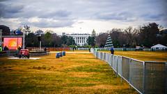 2017.12.12 National Menorah, Washington, DC USA 1373