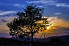 GIO_4143 (gio.cam) Tags: shilouette sole nero orizzonte ngc
