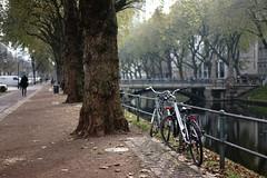 bike@Kö, Düsseldorf 10 (Amselchen) Tags: bicycle street trees water moat reflection bridge people kö düsseldorf germany season autumn fall light shadow bokeh blur dof depthoffield sony a7 alpha7 zeiss carlzeiss sonnar za sonyilce7 fe55mmf18za sonnartfe1855 sonnar5518za