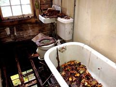 Time For a Remodel (Darren-) Tags: abandoned building barn color demolish despair gross house irregular longislandny light newyork timber usa decay cold spring harbor