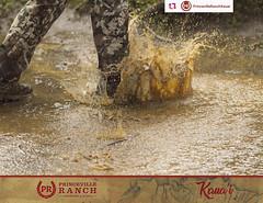 Princeville Ranch - JVA Excursion (travisarket) Tags: atv 4x4 zipline zip line waterfall kauai hawaii princeville ranch north shore hanalei
