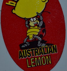Fruit Sticker (Images by Jeff - from the sea) Tags: lemon red yellow bug fruitsticker australia nikon d7200 tamronsp90mmf2811macro macro sticker 7dwf