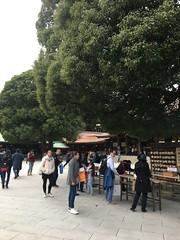 明治神宮 (Gazz'n'Sho) Tags: meijijingu meiji jingu shinto shrine winter garden tokyo japan ema wooden board wishes makeawish