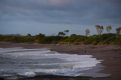 desolate stretch (TazNoMore) Tags: granpacifica nicaragua beach ocean pacific
