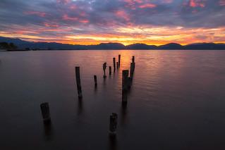 Lago Di Massaciuccoli - Sunrise