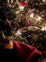 2017 - photo 338 of 365 (old_hippy1948) Tags: christmas champagne
