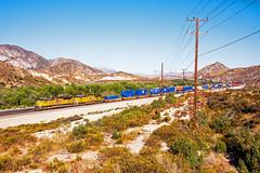 UP 8659+7604 on westbound intermodal. Cajon roadside. 16 September2009. (mikul44171) Tags: 8659 7604 unionpacific intermodal containers boxes cajon