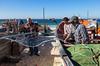 Fishermen work (JOAO DE BARROS) Tags: joão barros fisherman people fontedatelha portugal