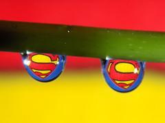 Superman Water Drop (rachael242) Tags: superman hero symbol water drop waterdrop macro close up liquid create