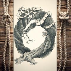 Ohameleon (reXraXon) Tags: art artwork pencilart drawing handdrawing sketch pencilsketch typography lettering handlettering letteringart chameleon tree