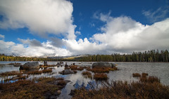 Clouds over Wright's Lake (Middle aged Nikonite) Tags: wrights lake california nikon d750 wide angle irix 11mm hyperwide trees clouds water landscape nature outdoor reflections grass