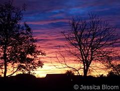 November 5, 2017 - A stunning sunrise. (Jessica Bloom)