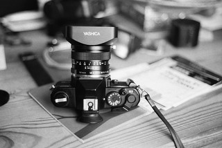 Yashica. (35mm) | Ilford Pan 400.