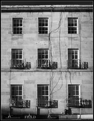 Windows/Shadows (Donald Noble) Tags: edinburgh scotland architecture building cable engineering monochrome shadow stone window