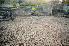 Floor of Lesnes Abbey (zawtowers) Tags: green chain section 1 walk thamesmeadtolesnesabbey sunday 12th november 2017 dry cold amble stroll walking south east london suburbs lesnes abbey park lesnesabbeylesnes ruins closed 1534 dissolution stone floor preserved