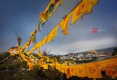 Songzanlin Monastery 松赞林寺 (Albert Photo) Tags: lijiang shangrila yunnanprovince songzanlinmonastery 松赞林寺