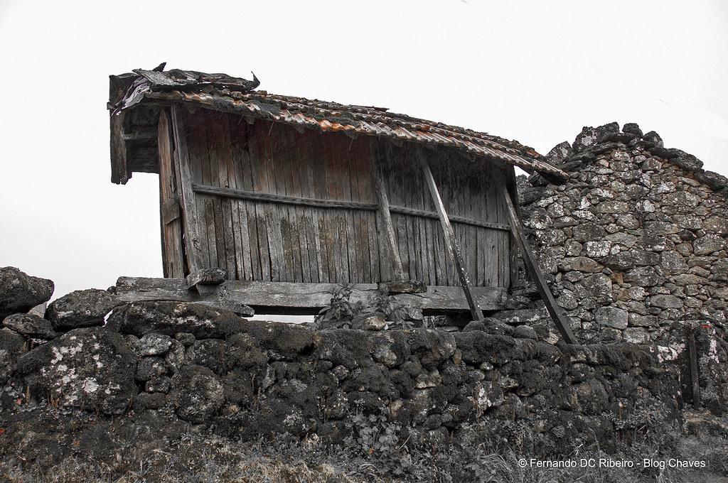 1600-covelaes (54)