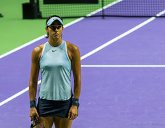 20171025-0I7A1996 (siddharthx) Tags: singapore sg simonahalep carolinegarcia elinasvitolina wtasingapore tennis womenstennis singaporeindoorstadium power grace elegance contest competition 1seed 4seed 6seed 8seed champions rally volley serve powerfulserves focus emotions sports wtatour porscheservesspeed bnpparibas stadium sport people wta winner sign crowd carolinewozniacki portrait actionshots frozenintime