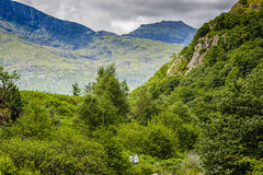 walking in the welsh hills (gopper) Tags: mountains glaslyn valley snowdon snowdonia wales welsh cymru uk british nikon d7100 sigma 105mm ngc postcard scenic towering summer green fflickr flickr afonglaslyn glaslynvalley porthmadoc nantgwynant beddgelert cymraeg forest hills
