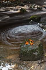"Whirlpool (""A.S.A."") Tags: whirlpool longexposure river autumn rocks slow shutter leaves sonya7rmkii sony2470f28gm heliopancpl countryside bowlees teesdale countydurham britain asa2017"