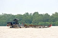 Hauling Wood:  Boat on the Mekong River (Ginger H Robinson) Tags: boat cargo transport wood tire tree water wave mekongriver mekongdelta sandisland bentre province southern vietnam southeastasia