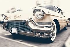 Cadillac (partsavatar) Tags: cars caraccessory classiccars autoparts canada ontario toronto montreal vancouver amazingcars carstagram automotives carphotography justcarthings carstuff carjokes carmemes wanderlust landscape carworld caraholics automotiveaddict cadillac longdrive newyear vinatge vintagecars volkswagen beetle volkswagenbeetle