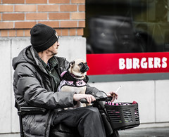 Best Friend,s. (Omygodtom) Tags: street people perspective dof d7100 digital abstract art dog friend red nikon70300mmvrlens portland pov diamond oregon