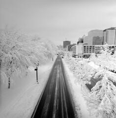 Winter Wonderland #4 (spiritusmentis) Tags: hasselblad swc 38mm f45 carlzeiss biogon rodinal 1100 stand development fuji neopan acros 100 portland oregon snow downtown naito
