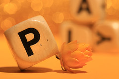 P is for PLAY (alideniese) Tags: macromondays gamesorgamepieces macro closeup bokeh game boggle dice letters letterdice cubes alideniese 7dwf colour yellow flower strawflower focus shallowdepthoffield play playful toltoys wordgame