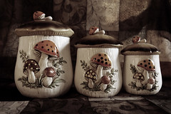Canister Set 12-02-17 (MelenaMe) Tags: vintage container mushroom mushrooms set containers canisters canisterset sepia