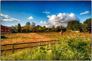 Hoyerswerda - Kinder -und Jugendfarm
