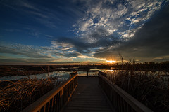 On the Dock (Middle aged Nikonite) Tags: yolo bypass nikon d750 irix 11mm sunset landscape california outdoor reflection water dock pier clouds golden nature sky