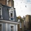 Elle met du vieux pain sur son balcon... (Nadia (no awards please !)) Tags: stmalo remparts fenêtre window oiseaux birds pain bread chanson song