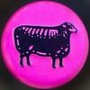 Le Grand Pinot Noir (Timothy Valentine) Tags: 2017 bottlecap blacksheep wine home 1217 squaredcircle eastbridgewater massachusetts unitedstates us